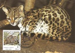 1988 - SALVADOR - Margay - Chat Tigre  - WWF - Salvador