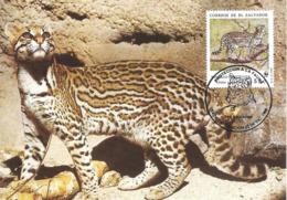 1988 - SALVADOR - Ocelot WWF - Salvador