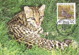 1988 - SALVADOR - Ocelot WWF - El Salvador