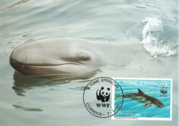 1992 - SAO TOME E PRINCIPE - False Killer Whale - Fausse Orque Pseudorca - Sao Tome And Principe
