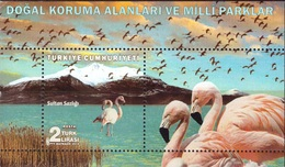 Turkey, 2018, Flamingo, Block - Flamants
