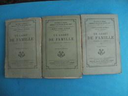 Alexandre DUMAS Un Cadet De Famille -collection Michel Levy - Fin 19e- 3 Tomes - Livres, BD, Revues
