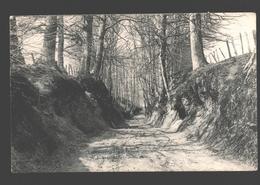 Tervuren / Tervueren - Chemin Creux - éd. Lagaert - 1907 - Tervuren