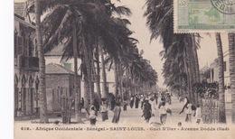 Sénégal, Saint-Louis, CPA, Guet N'Dar, Avenue Dodds, Les Bureaux De La Mauritanie à Gauche, - Mauritania