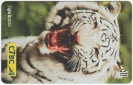 BRASIL K-016 Magnetic CTBC - Animal, Cat, Tiger - Used - Brasile