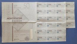 Certificato Azionario 50 Azioni Società Montecatini Edison - Con Cedole - 1967 - Unclassified
