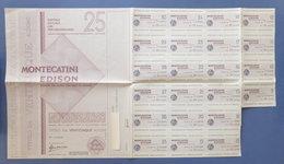 Certificato Azionario 25 Azioni Società Montecatini Edison - Con Cedole - 1967 - Unclassified