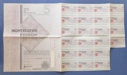 Certificato Azionario 5 Azioni Società Montecatini Edison - Con Cedole - 1967 - Unclassified