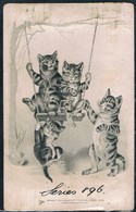 Chats Humanisés  - Cats -  Katze-  Geklede Poezen Schommel - Cats