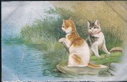 Chats Humanisés  - Cats -  Katze-  Geklede Poezen Vissen - Cats