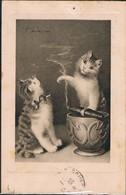 2 Chats - Cats -katzen - Poesjes Met Sigaar -Sperlich - Cats