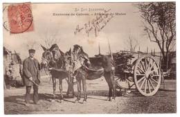 CAHORS - Attelage De Mules Aux Environs ... - Cahors