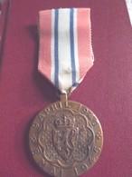 Médailles De NARVIK  Norvège - Médailles & Décorations