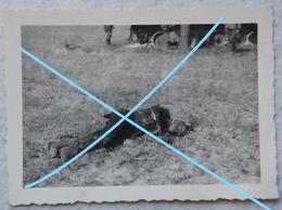 Photo POST MORTEM Russian Soldier 1941 RED ARMY Красная Армия Cadavre Carbonisé Tankiste Corpse Tank WW2 - Krieg, Militär