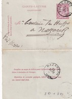 DDW753 - Entier Carte-Lettre Type TP 46 AUDENARDE 1894 Vers NAZARETH - Cartas-Letras