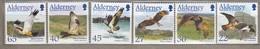 ALDERNEY FAUNA VOGELS OISEAUX BIRDS 2002 Mi 188-193 MNH (**) #10662 - Eagles & Birds Of Prey