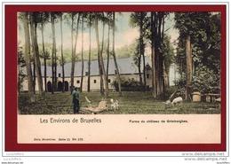 Les Environs De Bruxelles - Le Château De Grimberghen - Petite Animation - Nels Couleur - Série 11 N° 170 - Grimbergen