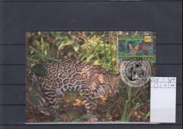 UNO Wien Michel Cat.No. Maxi Card 264 - Cartes-maximum