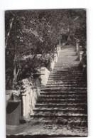 13275 ESPANA - PALMA DE  MALLORCA POSTMARK - Palma De Mallorca