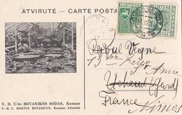 KAUNAS: BOTANIKOS SODAS/ ORIGINAL - Lituanie