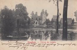Diegem - Dieghem - Ferme Du Donjon - Diegem