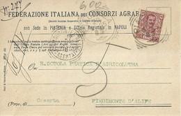 """6957 """" FEDERAZIONE ITALIANA DEI CONSORZI AGRARI """"-CART. POST. ORIG.  SPEDITA 1905 - Non Classificati"""
