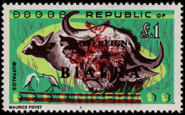 Biafra 1968 £1 African Buffalo Unmounted Mint. - Nigeria (1961-...)