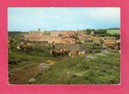 43 Haute Loire, PRADELLES, Vue Générale, Troupeau De Vaches, (J. Cellard), CPM - Andere Gemeenten
