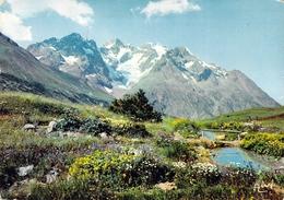 05 - Le Col Du Lautaret, Le Jardin Alpin, La Meije - Le Pavé, Le Pic Gaspard, Le Glacier De L'Homme - Francia
