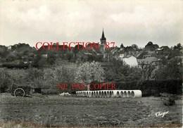 87 ☺♦♦ MAGNAC BOURG < VUE GENERALE  Coté Nord - Boules De Foin Et Charrette -  THEOJAC 88-4 - Sonstige Gemeinden