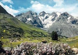 05 - Col Du Lautaret - Jardin Alpin - Francia