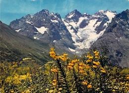 05 - Massif De La Meije - Les Glaciers - Francia