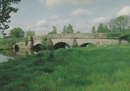VERN SUR SEICHE  Le Pont Romain (Gd Format) - France
