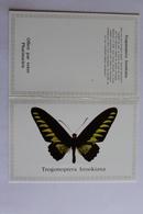 Petit Calendrier 1986  Papillon TROGONOPTERA BROOKIANA - Calendriers