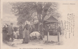 Bv - Cpa Jour De Foire à ST BRIEUC  (cochons) (poème De Botrel) - Saint-Brieuc