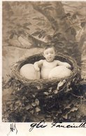 CPA  - Bébé Dans Un Nid Avec Des Oeufs- écrite - - Bébés