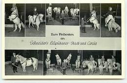 Zum Andenfen Am Schneider's Liliputaner - Stadt Und Circus - Circus