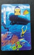 Telecarte France Publique 2000 Le XXe Siecle N 7 - La Plongee Mer   Plongée  Plongée En Apnée   Sous-marins   - France