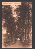 Les Waleffes - Château De Waleffes - L'Avenue D'Ormes - Faimes