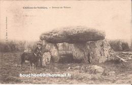 37 Chateau-la-Vallière (chinon Langeais) - Dolmen De Villiers Enfant Chevres Goat - Frankreich