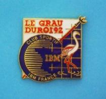 1 PIN'S //   ** IBM FRANCE / CLUB SPORTIF / FLAMANT ROSE & PIQUE DES GARDIANS / LE GRAU DU ROI / 92' ** - Informatique