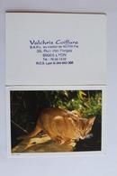 Petit Calendrier 1995 Offert Par Valchris Coiffure LYON  UN CHAT - Calendriers