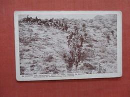 Machine Gun Detachment South Of Casa Grandes In Mexico  Ref 3946 - Militaria