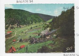 CPM - PIERRE SUR HAUTE (63) Vallée Du Fossat - Prédaval - Sonstige Gemeinden