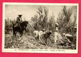 CPA (Réf : AA 056) (GUADELOUPE) Coupe De Canne à Sucre (animée) - Guadeloupe