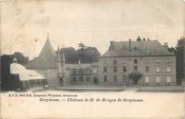 Belgique - Gerpinnes - Château De M. De Bruges De Gerpinnes - D.V.D. N° 9244 - Gerpinnes