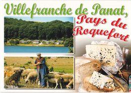 Cpm,12 Multivues De Villefranche De Panat, Moutons, Roquefort, Non écrite - Saint Affrique