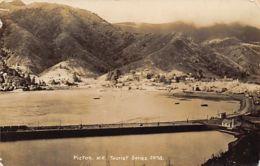 New-Zealand - PICTON - Bird's Eye View - Publ. Franck Duncan & Co. - Nieuw-Zeeland