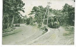 CPSM 17200 ROYAN :  Passage Du Tramway  Allant De ST Georges De Didonne à Ronce Les Bains  1938 - Royan