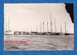 Photo Ancienne Snapshot - Port De CANNES Ou Environs - Voilier / Bateau - 1968 - Alpes Maritimes Antibes Juan Les Pins - Schiffe